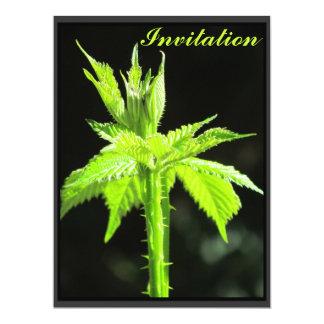 """Invitation - Green Blackberry Vine - Multipurpose 6.5"""" X 8.75"""" Invitation Card"""