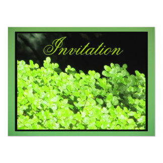 """Invitation - Green Hedge - Multipurpose 6.5"""" X 8.75"""" Invitation Card"""