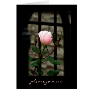 Invitation Note Card ~ Roses~ Floral Photography