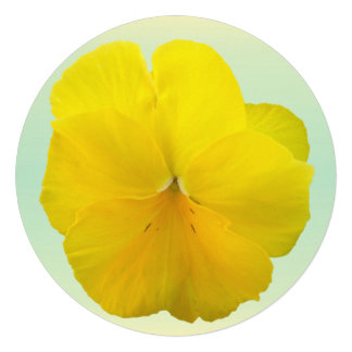 Invitation - Pencilled Yellow Pansy Personalized Invitations