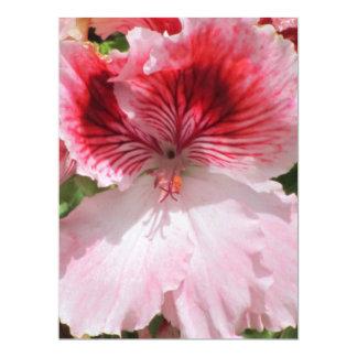 Invitation - Pink-Orange Gladiola - Multipurpose