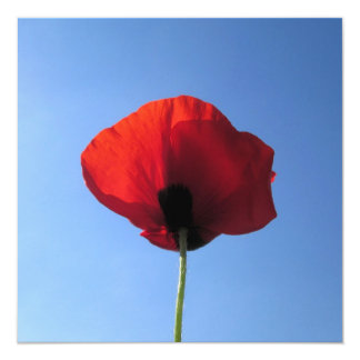 "Invitation - Red Poppy Blue Sky 5.25"" Square Invitation Card"