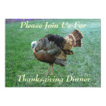 Invitation--Thanksgiving Turkey