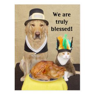 Invite a friend for Thanksgiving! Postcard