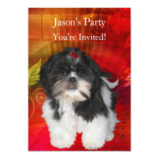 Invite Birthday Party Shih Tzu on Abstract Red
