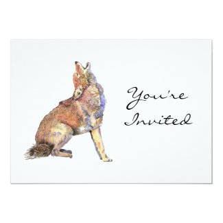 Invite, Invitation,,Coyote Animal, Wilderness 5x7 Paper Invitation Card
