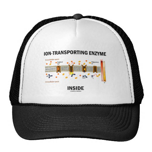 Ion-Transporting Enzyme Inside (Active Transport) Trucker Hats