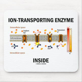 Ion-Transporting Enzyme Inside (Active Transport) Mouse Pad