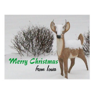 Iowa Christmas Postcard