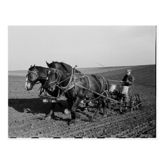 Iowa Corn Planting Postcard