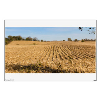 Iowa Cornfield Panorama Photo Wall Decal