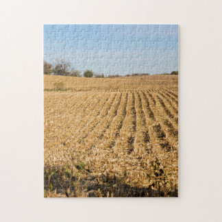 Iowa Cornfield Panorama Puzzle