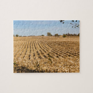 Iowa Cornfield Panorama Puzzles