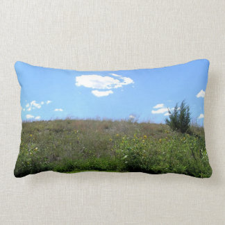 Iowa Fields Throw Pillows