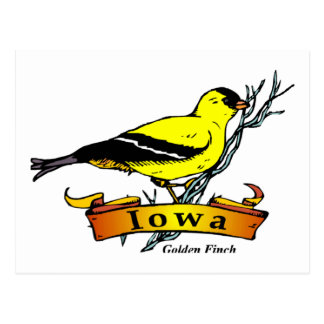 Iowa Goldfinch Postcard