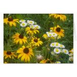 Iowa Prairie Flower Note Card
