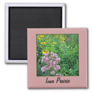 Iowa Prairie 2 Inch Square Magnet