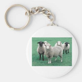 Iowa Sheep Basic Round Button Keychain