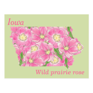 Iowa State Flower Collage Map Postcard