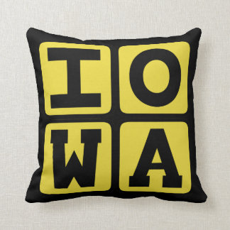 IOWA State Iowan Hawkeye Des Moines Cedar Rapids Throw Pillow