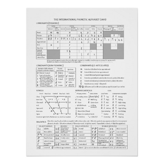 IPA Chart | Zazzle.com