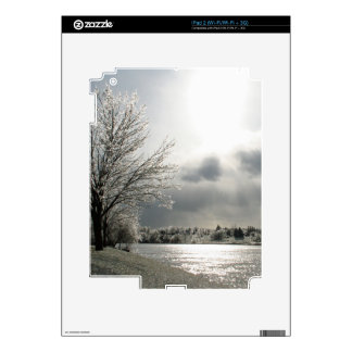 iPad 2 skin with photo of icy winter landscape