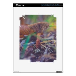 iPad 3 de la seta del bosque (Wi-Fi/Wi-Fi + 4G iPad 3 Pegatinas Skins