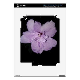 Ipad 3 in Style iPad 3 Skins
