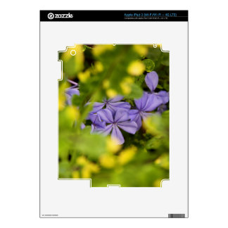 iPad 3 Skin - Blue Cape Plumbago