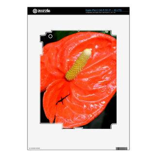 iPad 3 Skin - Chinese Lantern