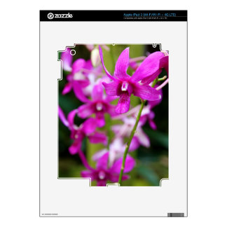 iPad 3 Skin - Cooktown Orchid