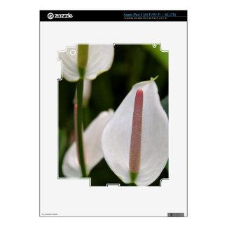 iPad 3 Skin - Flamingo Flower