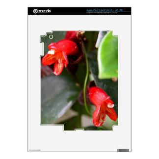 iPad 3 Skin - Lipstick Vine