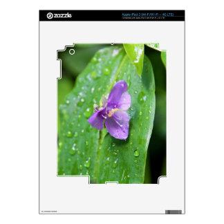 iPad 3 Skin - Widows Tears