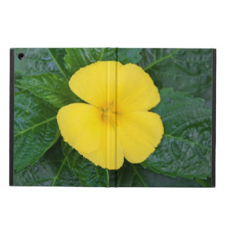 iPad Air Case - West Indian Holly