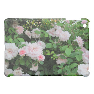 ipad Case: Cecile Brunner Pink Roses Cover For The iPad Mini