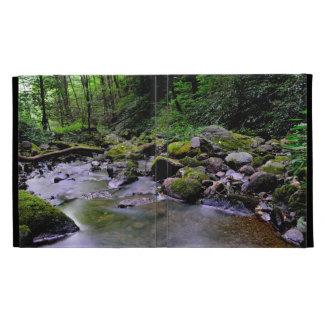 iPad case - Clear Water on Green Creek