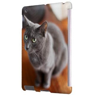 IPad Case Gray Cat for iPad 2/3/4