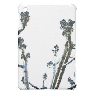 iPad Case - Knotty Tree Branches