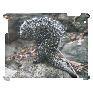iPad Case Porcupine