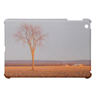 iPad case--Sunset on Elm iPad Mini Case