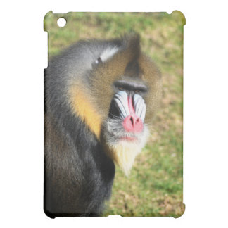 ipad case with Mandrill picture