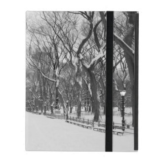 iPad Cover - Central Park in Winter, New York City