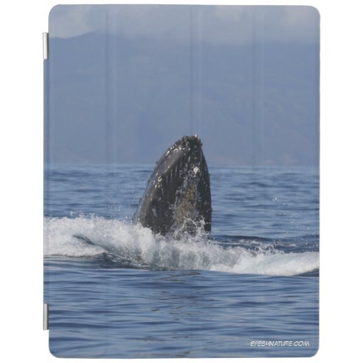 iPad cover featuring Humpback whale pod