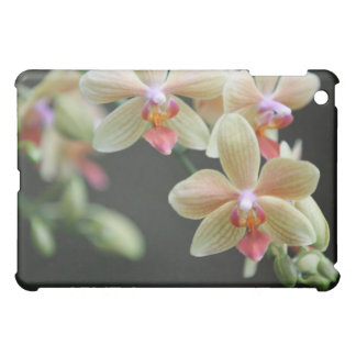 iPad Cover Orchid Dream