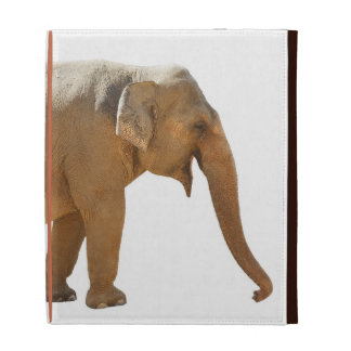 IPad foldable cover with an Asian Elephant iPad Case