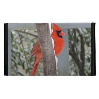 IPad folio-RED CARDINAL HARBINGER OF SPRING/IN SNO iPad Case