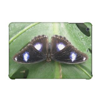 iPad manchado azul hermoso de la mariposa mini