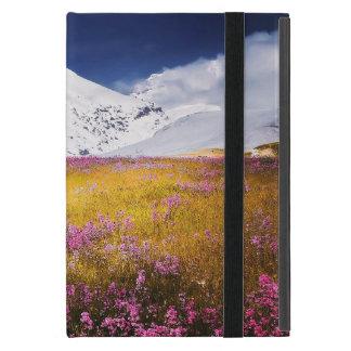 iPad Mini Case Alps landscape with No Kickstand