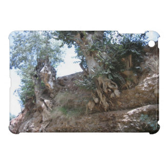 iPad Mini Case: Tree Roots Sunny Spain iPad Mini Cover